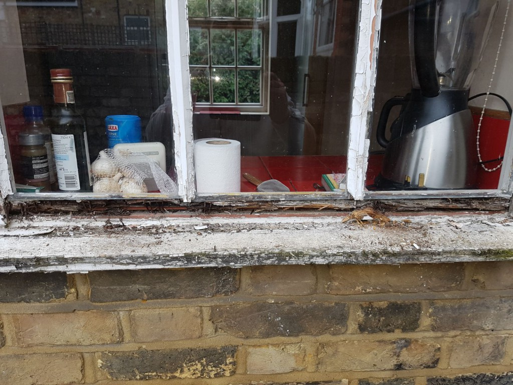 A window left for too long without any repair
